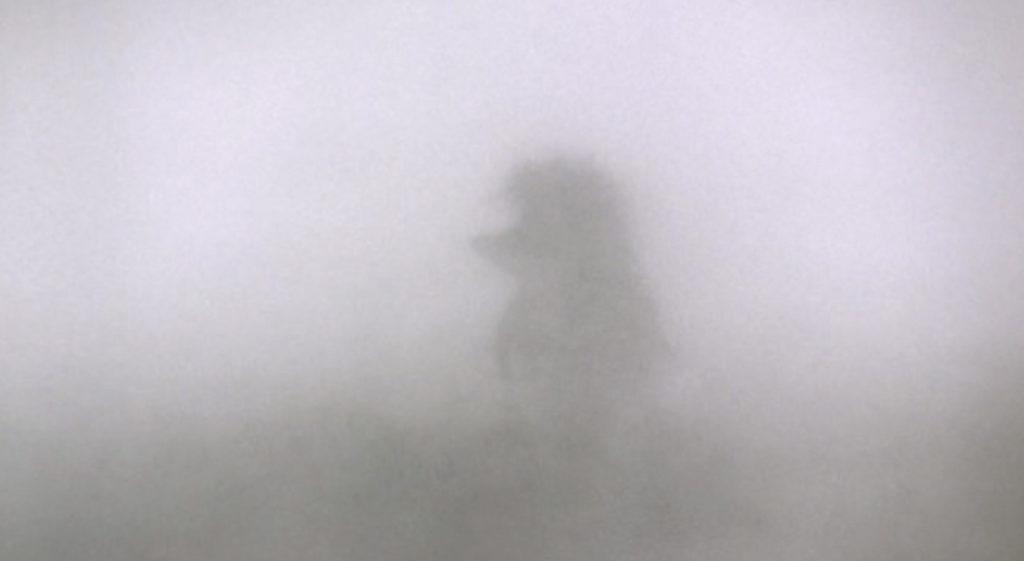 Видеть, как ёжик в тумане
